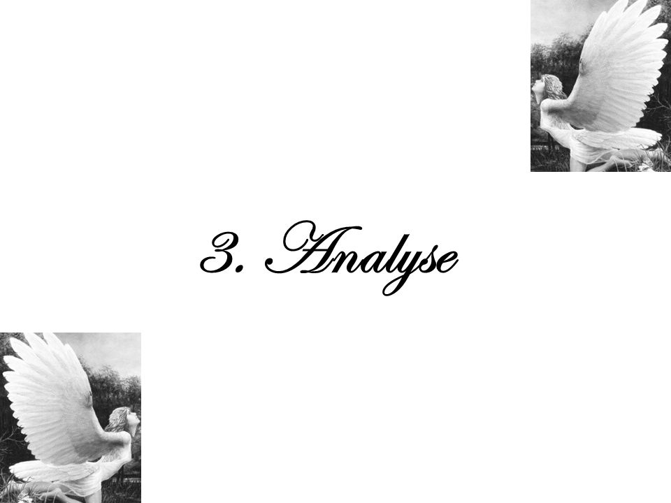 3. Analyse