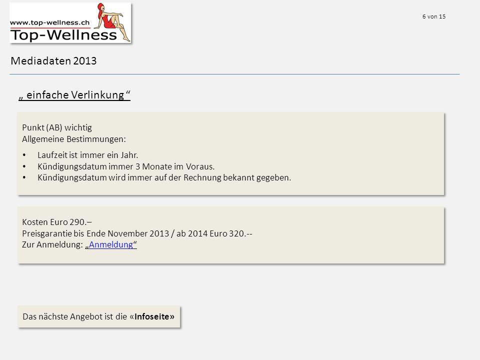 Mediadaten 2013 einfache Verlinkung Punkt (AB) wichtig Allgemeine Bestimmungen: Laufzeit ist immer ein Jahr.