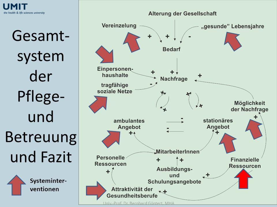 Gesamt- system der Pflege- und Betreuung und Fazit Systeminter- ventionen Univ.-Prof. Dr. Bernhard Güntert, MHA