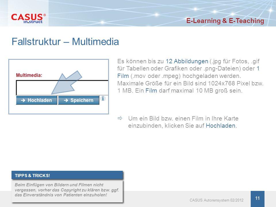 11 Fallstruktur – Multimedia Es können bis zu 12 Abbildungen (.jpg für Fotos,.gif für Tabellen oder Grafiken oder.png-Dateien) oder 1 Film (.mov oder.mpeg) hochgeladen werden.