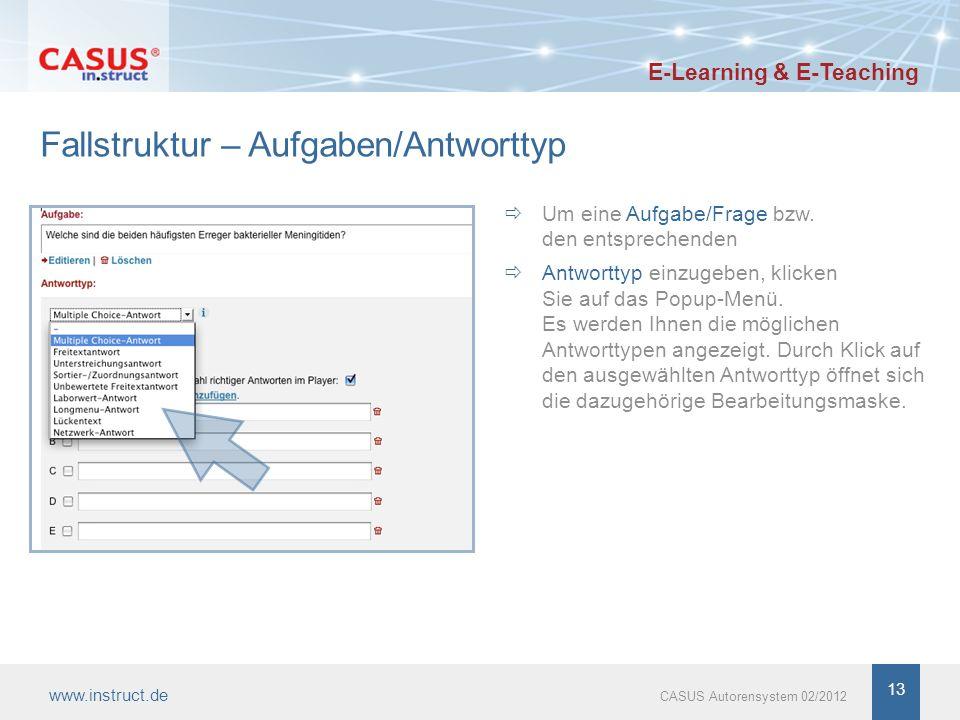 13 Fallstruktur – Aufgaben/Antworttyp Um eine Aufgabe/Frage bzw.