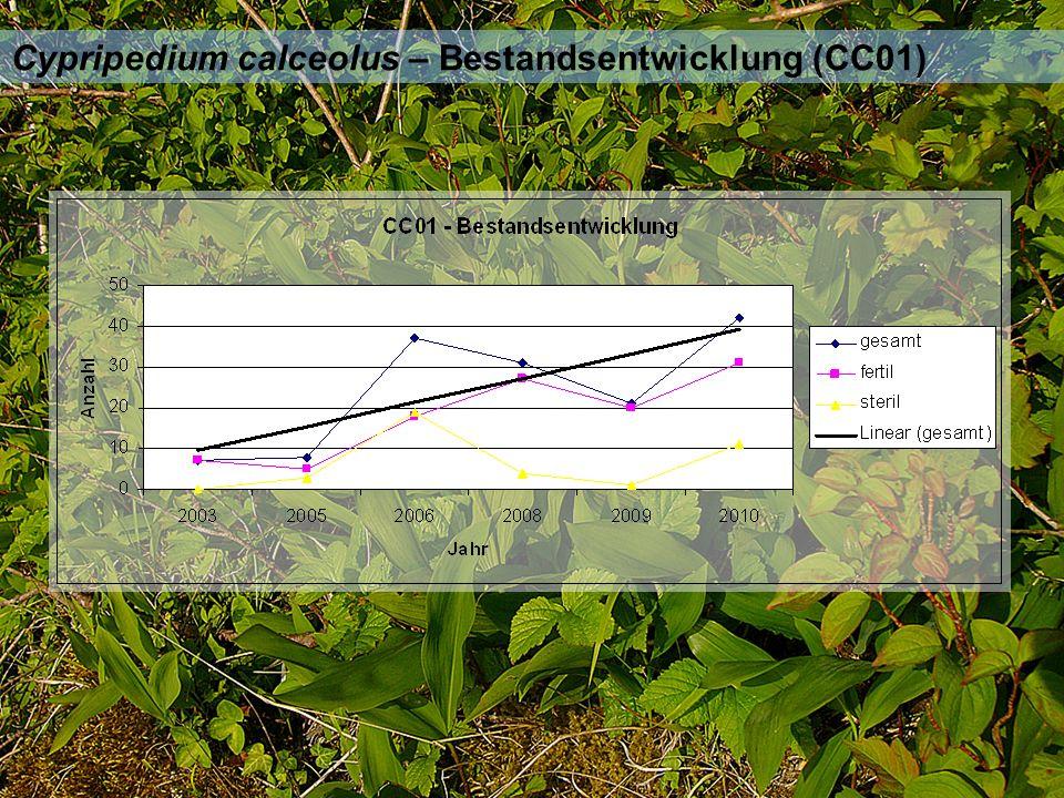 Cypripedium calceolus – Bestandsentwicklung (CC01)