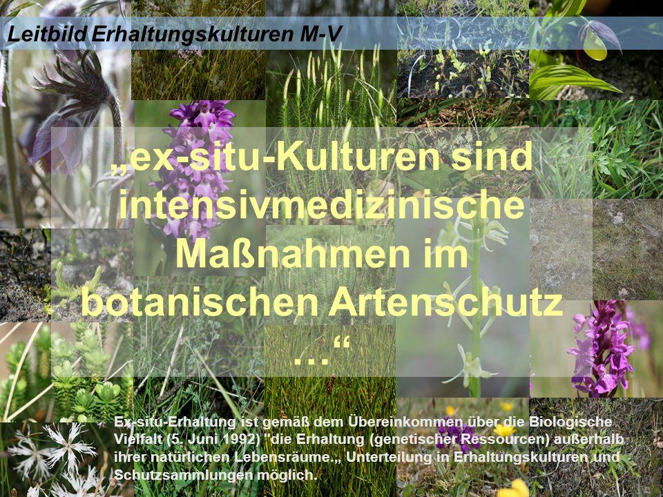 Leitbild Erhaltungskulturen M-V ex-situ-Kulturen sind intensivmedizinische Maßnahmen im botanischen Artenschutz … Ex-situ-Erhaltung ist gemäß dem Übereinkommen über die Biologische Vielfalt (5.