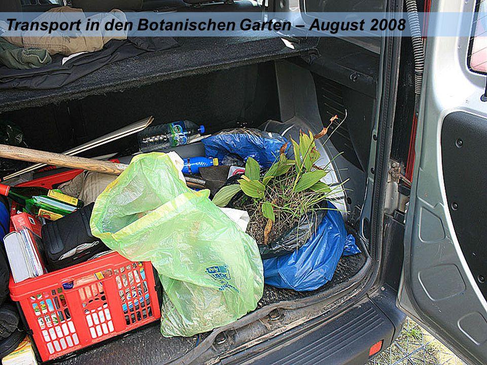 Transport in den Botanischen Garten – August 2008