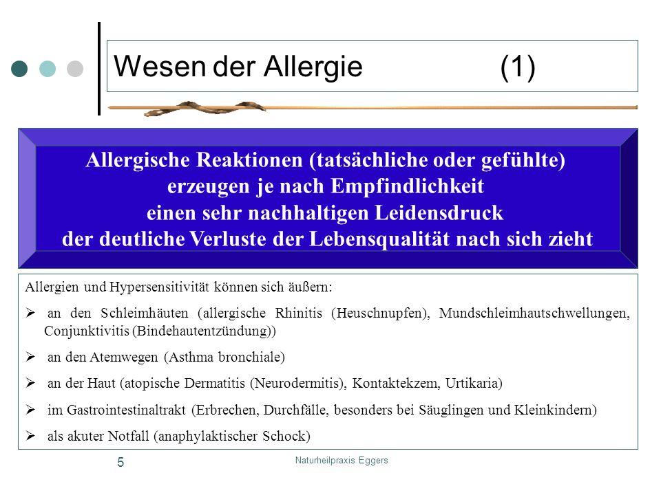 Naturheilpraxis Eggers 5 Wesen der Allergie (1) Allergische Reaktionen (tatsächliche oder gefühlte) erzeugen je nach Empfindlichkeit einen sehr nachha