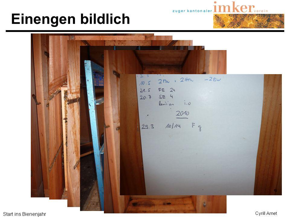 Start ins Bienenjahr Cyrill Arnet 1.