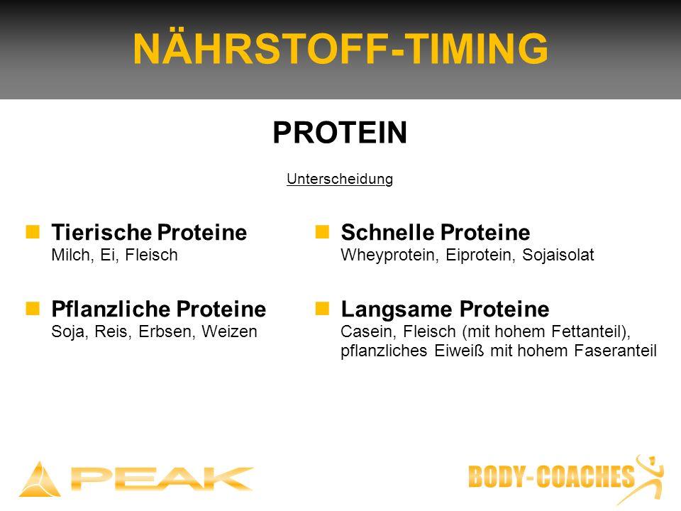 NÄHRSTOFF-TIMING PROTEIN Unterscheidung Tierische Proteine Milch, Ei, Fleisch Pflanzliche Proteine Soja, Reis, Erbsen, Weizen Schnelle Proteine Wheypr
