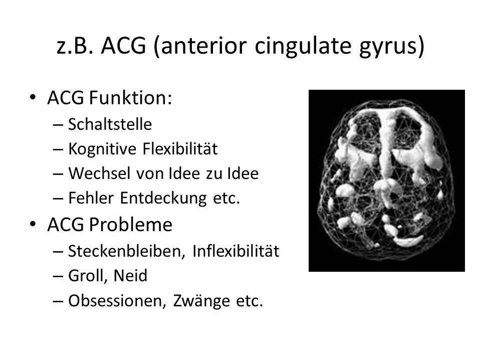 z.B. ACG (anterior cingulate gyrus) ACG Funktion: – Schaltstelle – Kognitive Flexibilität – Wechsel von Idee zu Idee – Fehler Entdeckung etc. ACG Prob