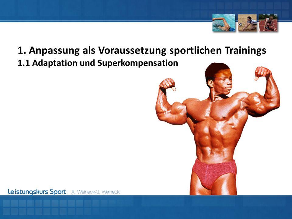 Komponenten der Trainingsbelastung: Reizkomplexität:Komplexität des jeweiligen Reizes Je höher die Komplexität des Trainings, desto höher wird der Schwierigkeitsgrad der Bewegungsaufgabe.