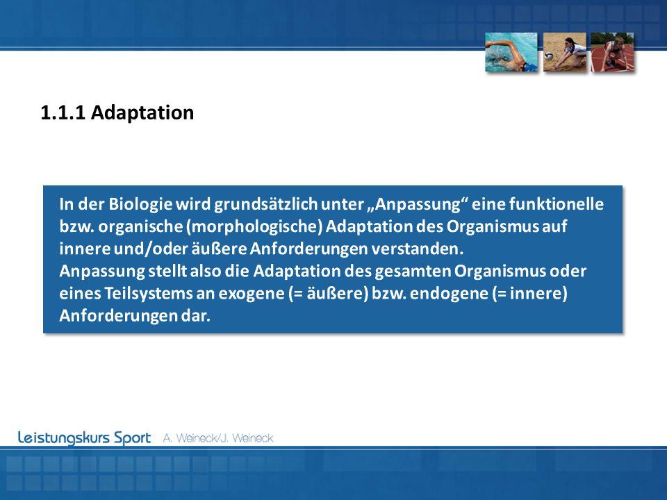 1.1.1 Adaptation