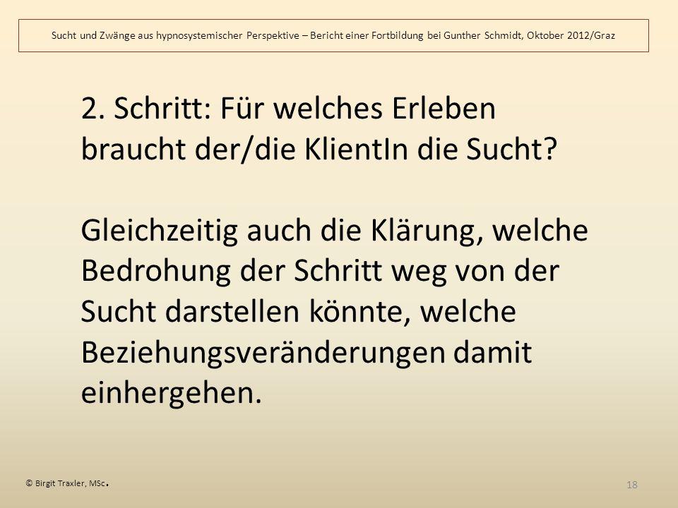 Sucht und Zwänge aus hypnosystemischer Perspektive – Bericht einer Fortbildung bei Gunther Schmidt, Oktober 2012/Graz © Birgit Traxler, MSc.