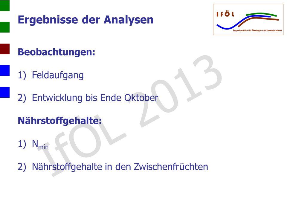 Beobachtungen: 1)Feldaufgang 2)Entwicklung bis Ende Oktober Nährstoffgehalte: 1)N min 2)Nährstoffgehalte in den Zwischenfrüchten Ergebnisse der Analys