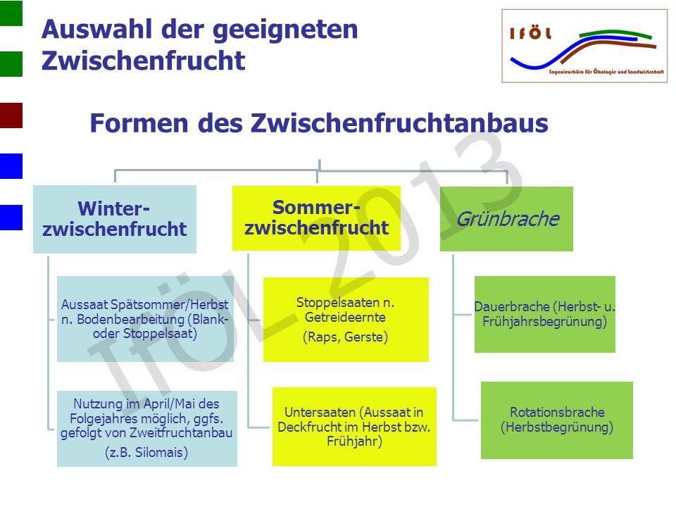 Formen des Zwischenfruchtanbaus Winter- zwischenfrucht Aussaat Spätsommer/Herbst n. Bodenbearbeitung (Blank- oder Stoppelsaat) Nutzung im April/Mai de