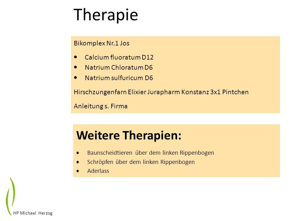 HP Michael Herzog Therapie Bikomplex Nr.1 Jos Calcium fluoratum D12 Natrium Chloratum D6 Natrium sulfuricum D6 Hirschzungenfarn Elixier Jurapharm Kons