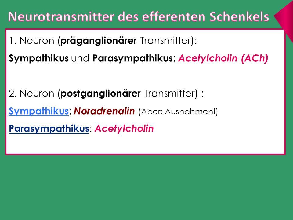 1. Neuron ( präganglionärer Transmitter): Sympathikus und Parasympathikus : Acetylcholin (ACh) 2. Neuron ( postganglionärer Transmitter) : Sympathikus