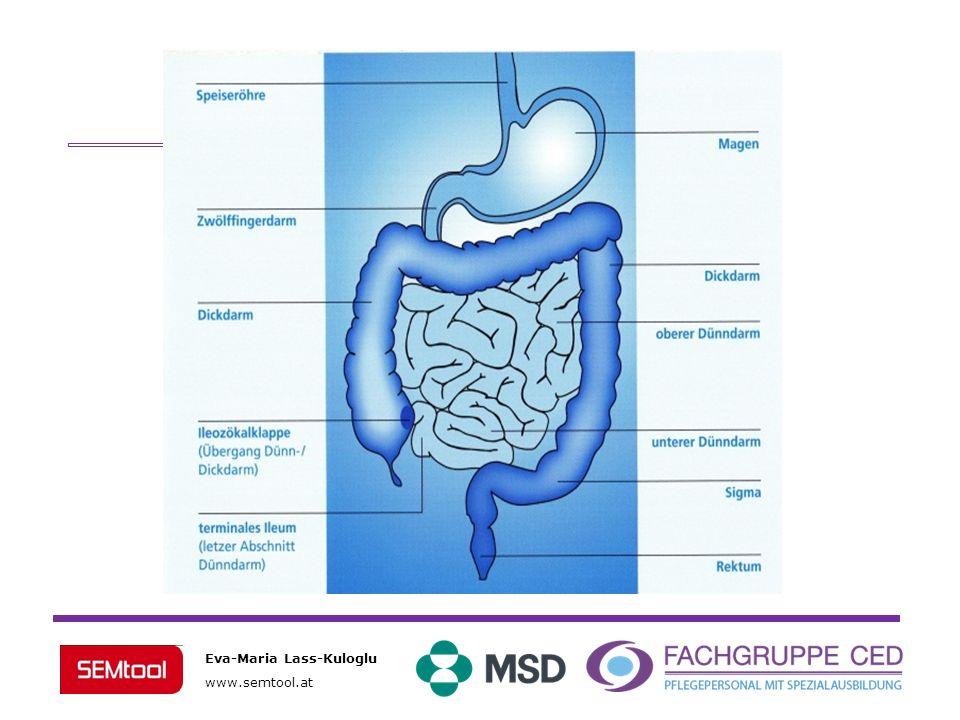 Eva-Maria Lass-Kuloglu www.semtool.at Was sind die Ursachen chronisch entzündlicher Darmerkrankungen?