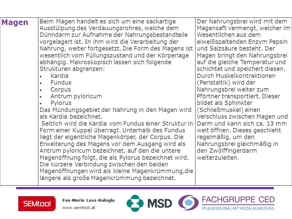 Eva-Maria Lass-Kuloglu www.semtool.at DünndarmZwölffingerdarm - Duodenum Leerdarm - Jejunum Krummdarm - Ileum Der gesamte Dünndarm ist der Hauptort der Verdauung und Aufnahme der Nahrungsbestandteile.