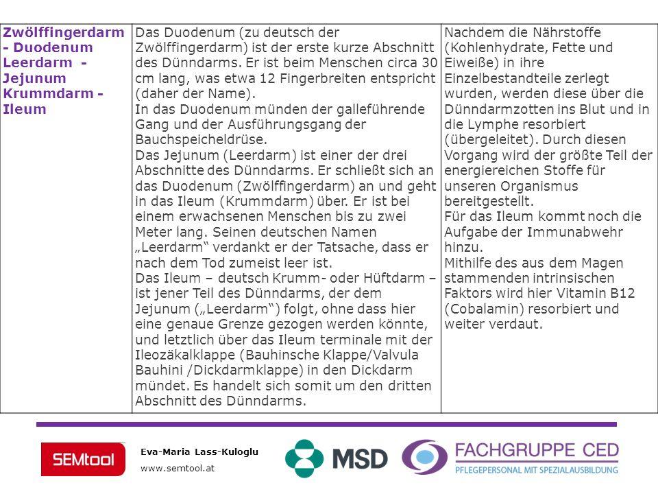 Eva-Maria Lass-Kuloglu www.semtool.at Terminales Ileum (Endabschnitt) Übergang Dünndarm / Dickdarm, beherbergt die Ileozäkalklappe(Bauhinsche Klappe/Valvula Bauhini /Dickdarmklappe) Valvula Bauhini – verhindert Rückstrom des Darminhaltes DickdarmBlinddarm mit dem Wurmfortsatz (lat.