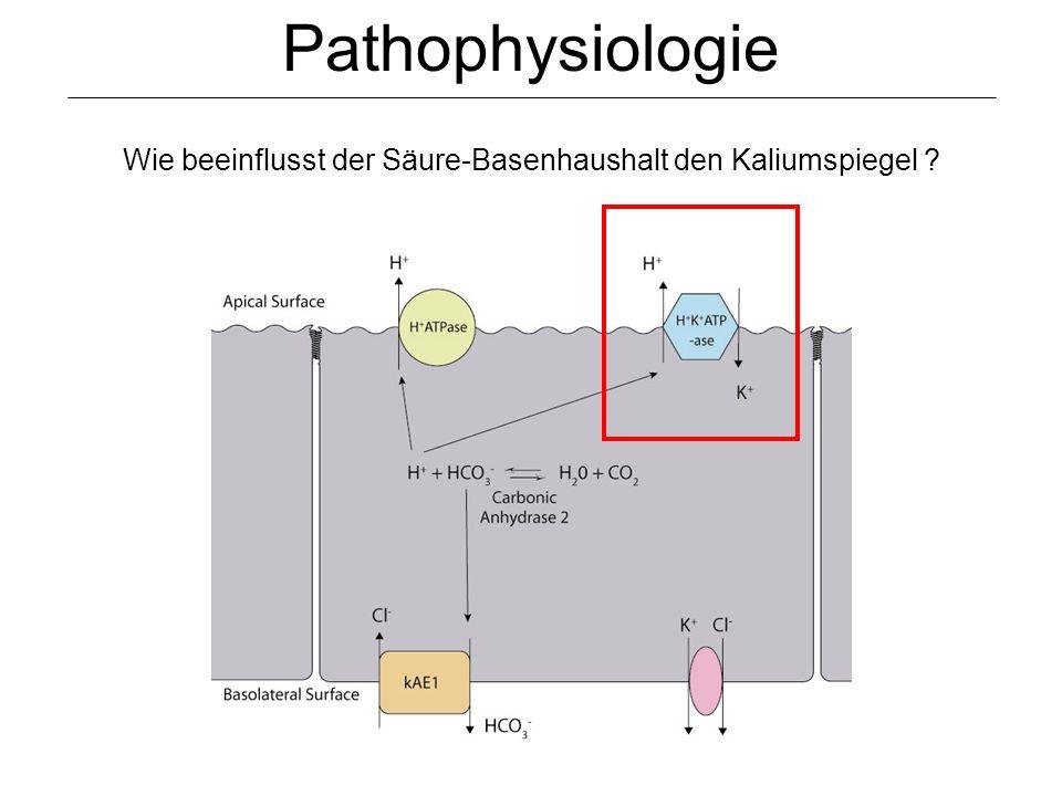Pathophysiologie Wie beeinflusst der Säure-Basenhaushalt den Kaliumspiegel ?