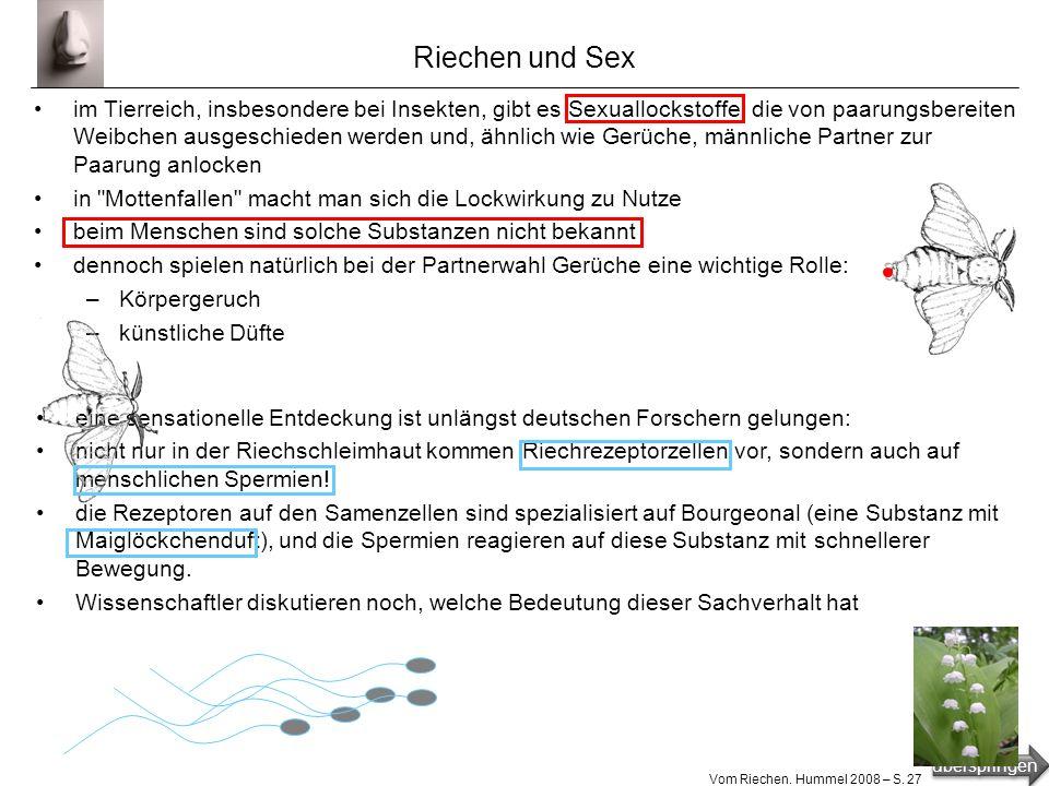 überspringen Vom Riechen. Hummel 2008 – S. 26 Riecherinnerung das Hirngebiet