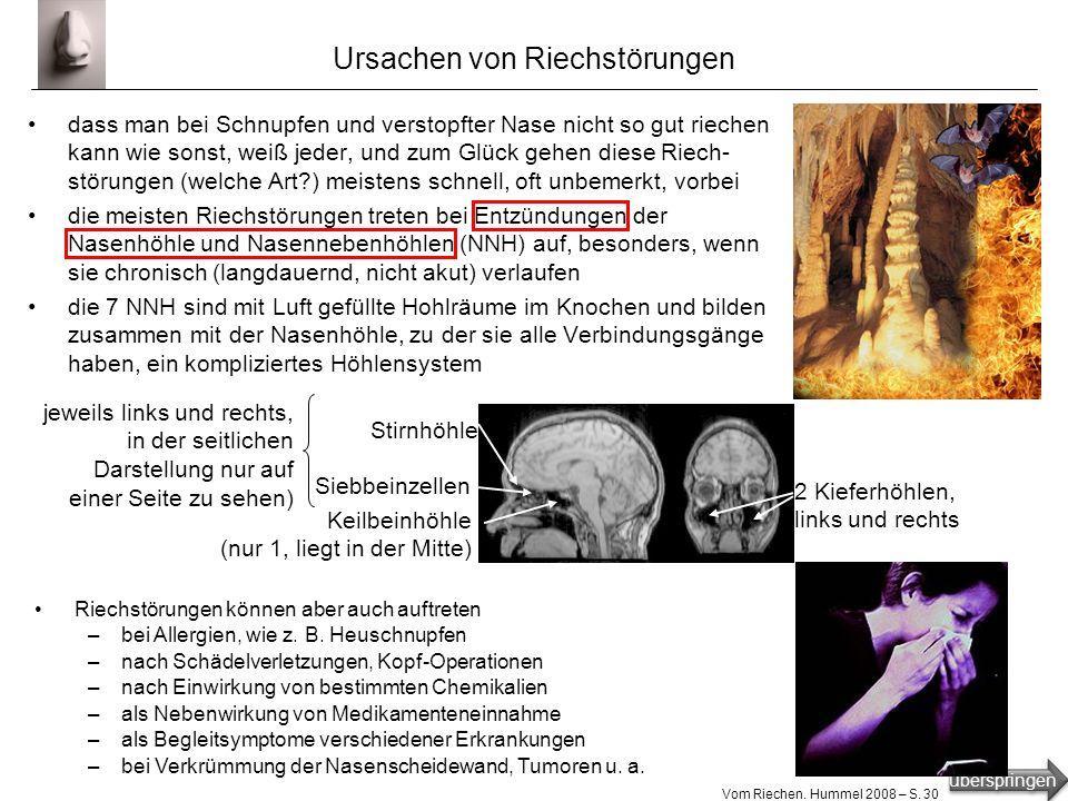 überspringen Vom Riechen. Hummel 2008 – S. 29 Arten von Riechstörungen quantitative Riechstörungen qualitative Riechstörungen normale, ungestörte Riec