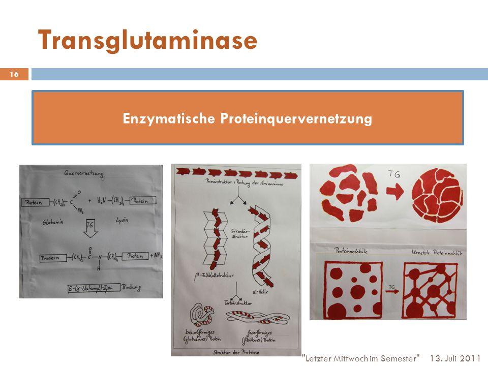 Transglutaminase 13. Juli 2011 Letzter Mittwoch im Semester 16 Enzymatische Proteinquervernetzung