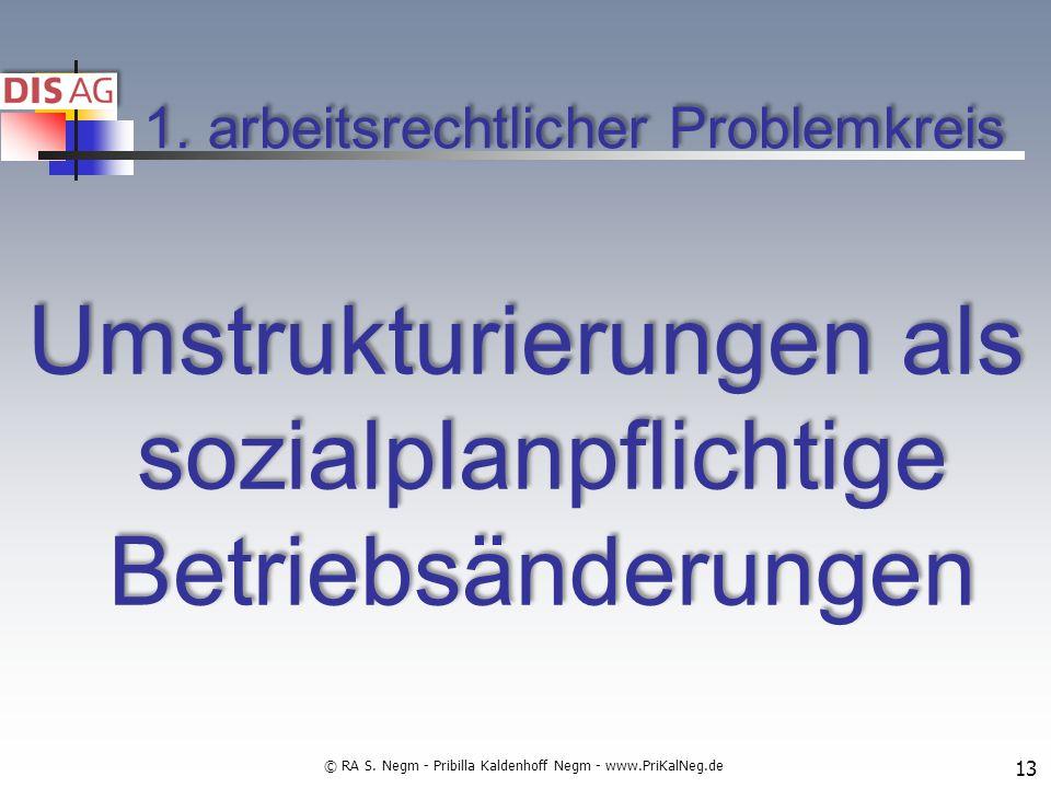 1. arbeitsrechtlicher Problemkreis Umstrukturierungen als sozialplanpflichtige Betriebsänderungen 13 © RA S. Negm - Pribilla Kaldenhoff Negm - www.Pri