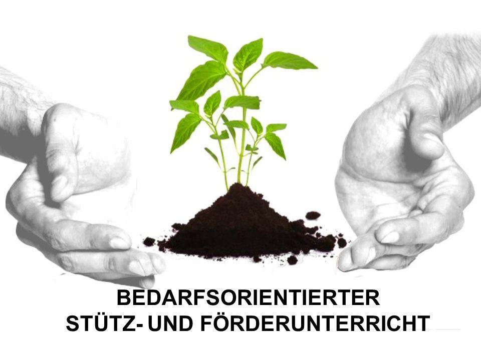 BEDARFSORIENTIERTER STÜTZ- UND FÖRDERUNTERRICHT