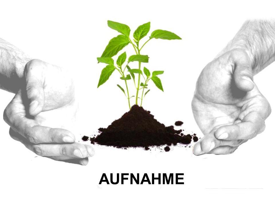 AUFNAHME