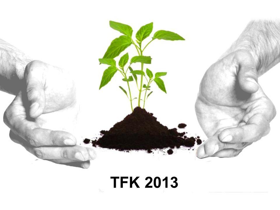 TFK 2013