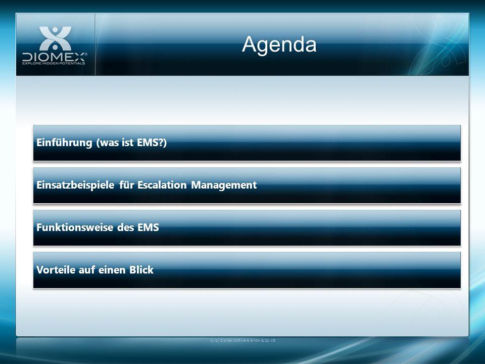 Einsatzbeispiele für Escalation Management (c) by Diomex Software GmbH & Co.