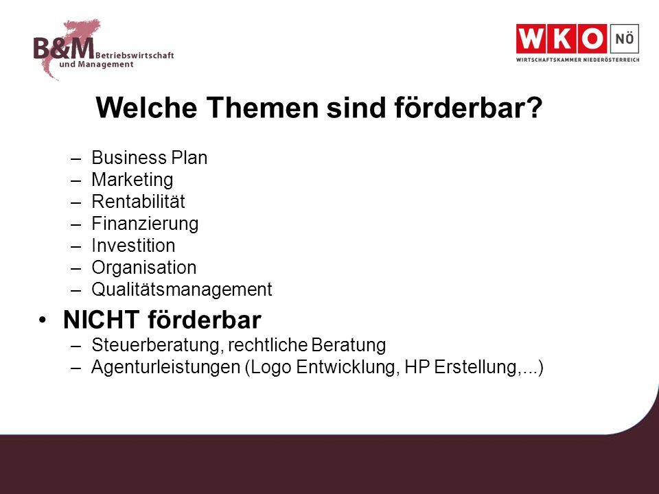 Welche Themen sind förderbar? –Business Plan –Marketing –Rentabilität –Finanzierung –Investition –Organisation –Qualitätsmanagement NICHT förderbar –S