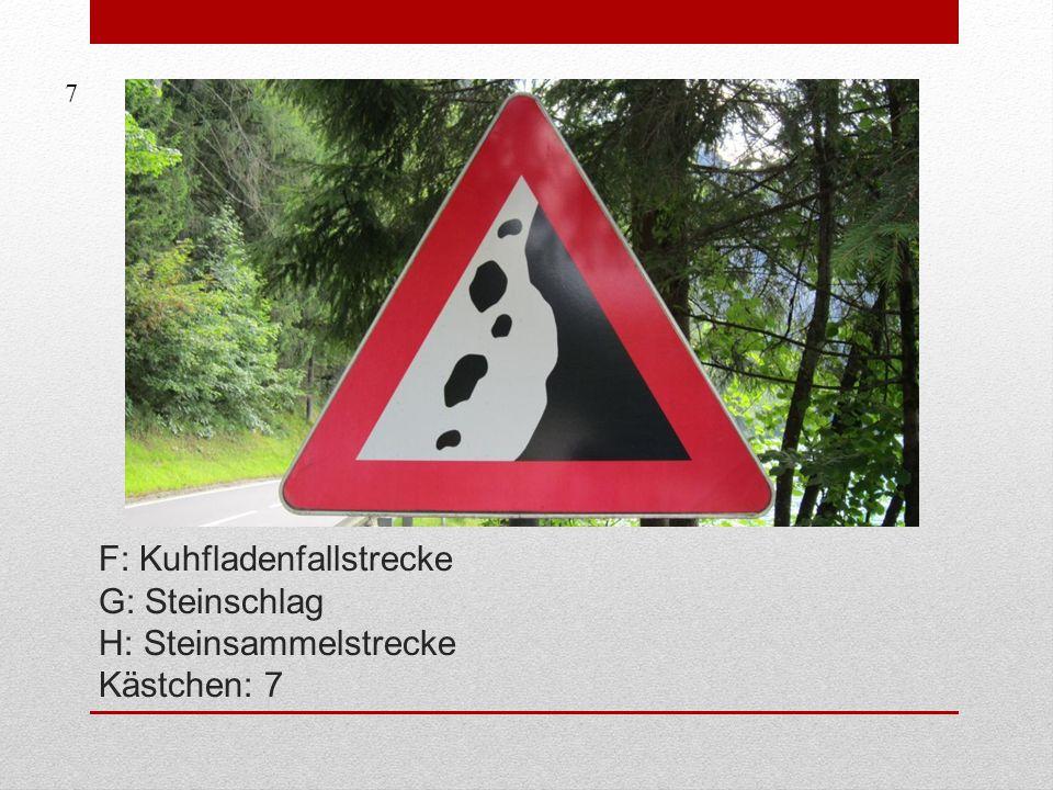 F: Kuhfladenfallstrecke G: Steinschlag H: Steinsammelstrecke Kästchen: 7 7