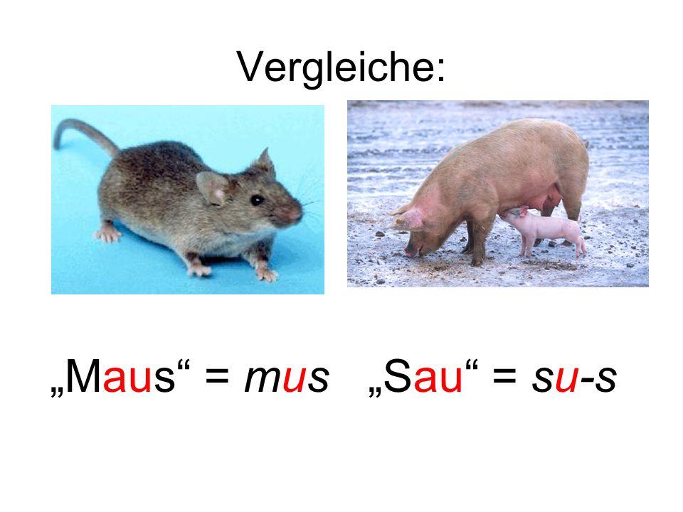 Vergleiche: Maus = mus Sau = su-s