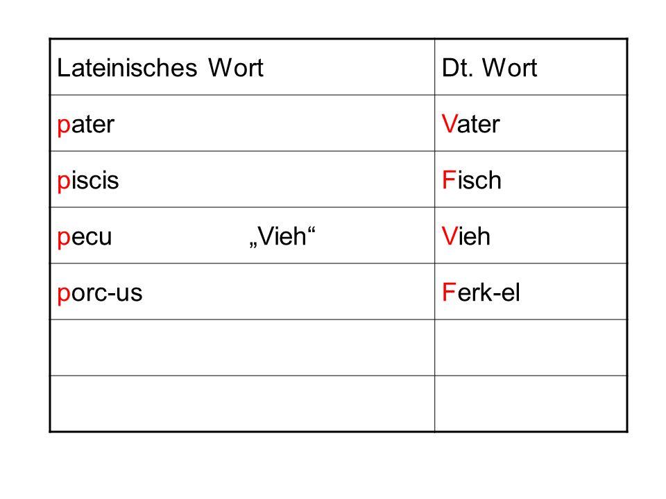 Lateinisches WortDt. Wort paterVater piscisFisch pecuVieh porc-usFerk-el