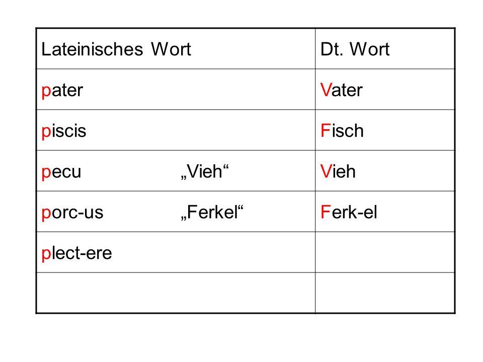 Lateinisches WortDt. Wort paterVater piscisFisch pecuVieh porc-usFerkelFerk-el plect-ere