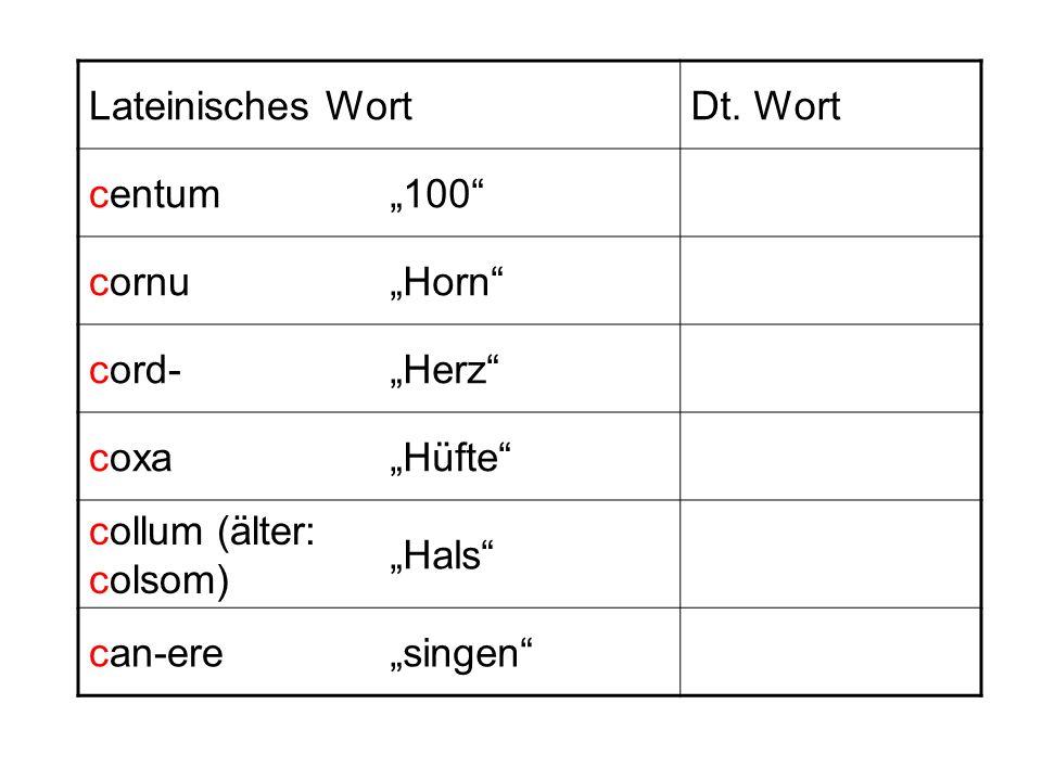 Lateinisches WortDt. Wort centum100 cornuHorn cord-Herz coxaHüfte collum (älter: colsom) Hals can-eresingen