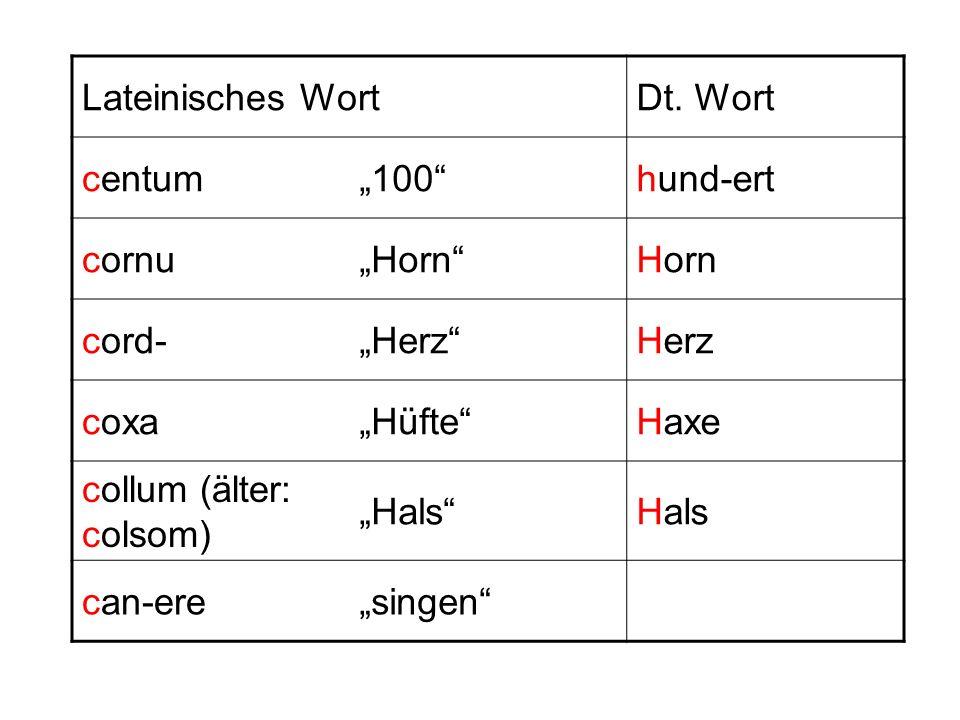 Lateinisches WortDt. Wort centum100hund-ert cornuHorn cord-Herz coxaHüfteHaxe collum (älter: colsom) Hals can-eresingen