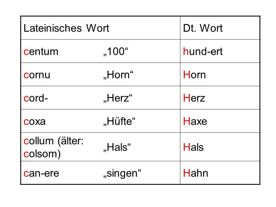 Lateinisches WortDt. Wort centum100hund-ert cornuHorn cord-Herz coxaHüfteHaxe collum (älter: colsom) Hals can-eresingenHahn