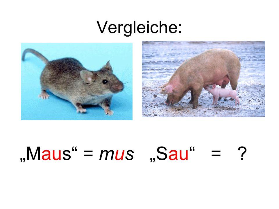Vergleiche: Maus = mus Sau = ?