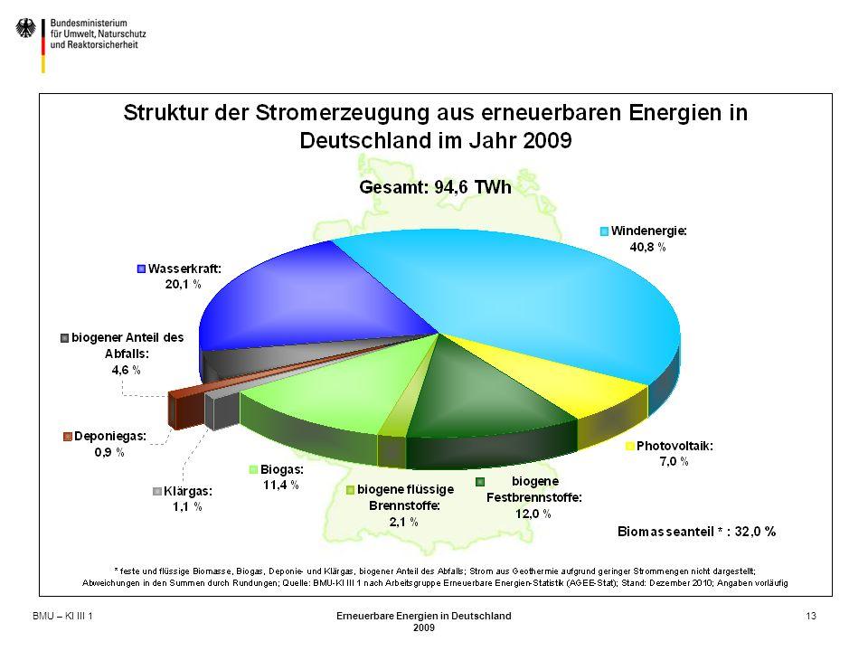 BMU – KI III 1 Erneuerbare Energien in Deutschland 2009 13