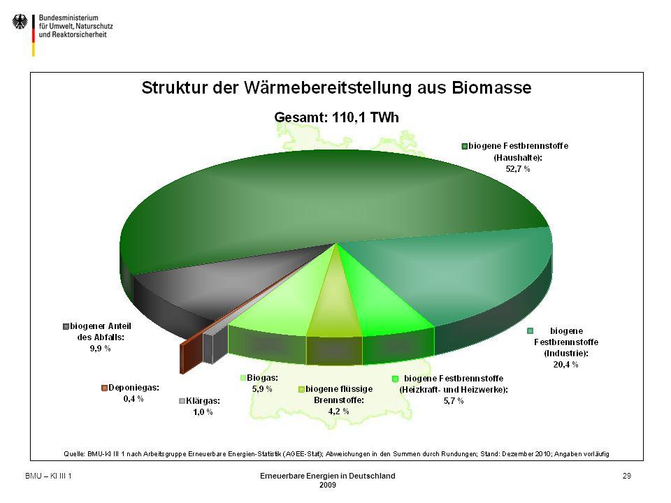 BMU – KI III 1 Erneuerbare Energien in Deutschland 2009 29