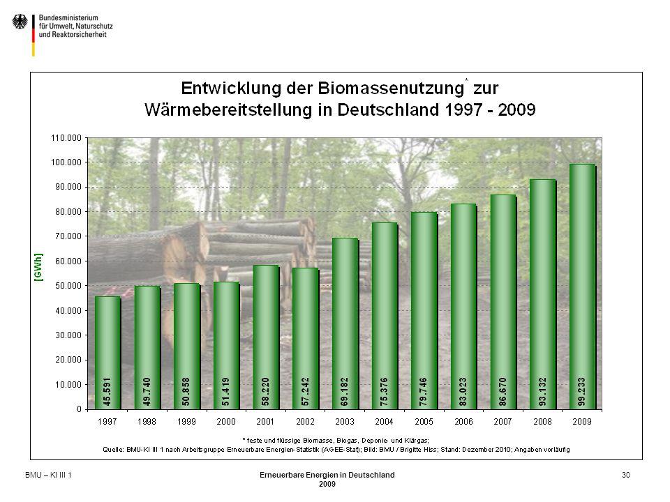 BMU – KI III 1 Erneuerbare Energien in Deutschland 2009 30