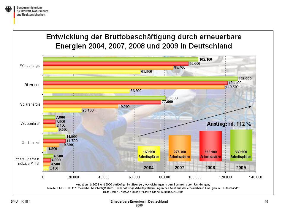 BMU – KI III 1 Erneuerbare Energien in Deutschland 2009 46