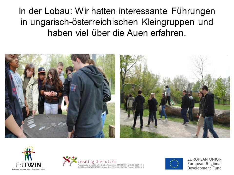 In der Lobau: Wir hatten interessante Führungen in ungarisch-österreichischen Kleingruppen und haben viel über die Auen erfahren.