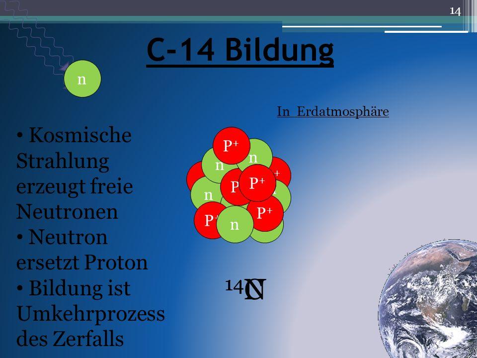 In Erdatmosphäre 14 N 14 C n P+P+ n n P+P+ n P+P+ n P+P+ P+P+ n nP+P+ n C-14 Bildung Kosmische Strahlung erzeugt freie Neutronen Neutron ersetzt Proto