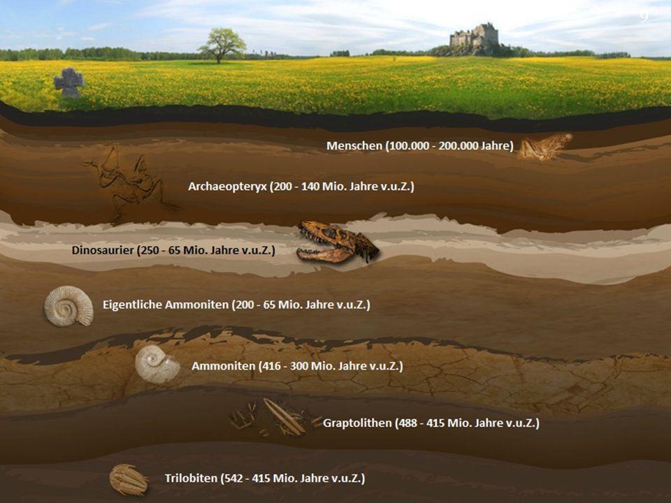 Probe 2 ist also etwa 10000 Jahre alt. 20