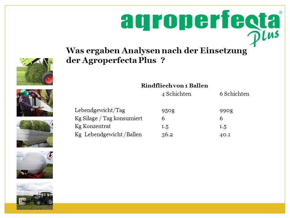 Was ergaben Analysen nach der Einsetzung der Agroperfecta Plus ? Rindfliech von 1 Ballen 4 Schichten 6 Schichten Lebendgewicht/Tag950g990g Kg Silage /