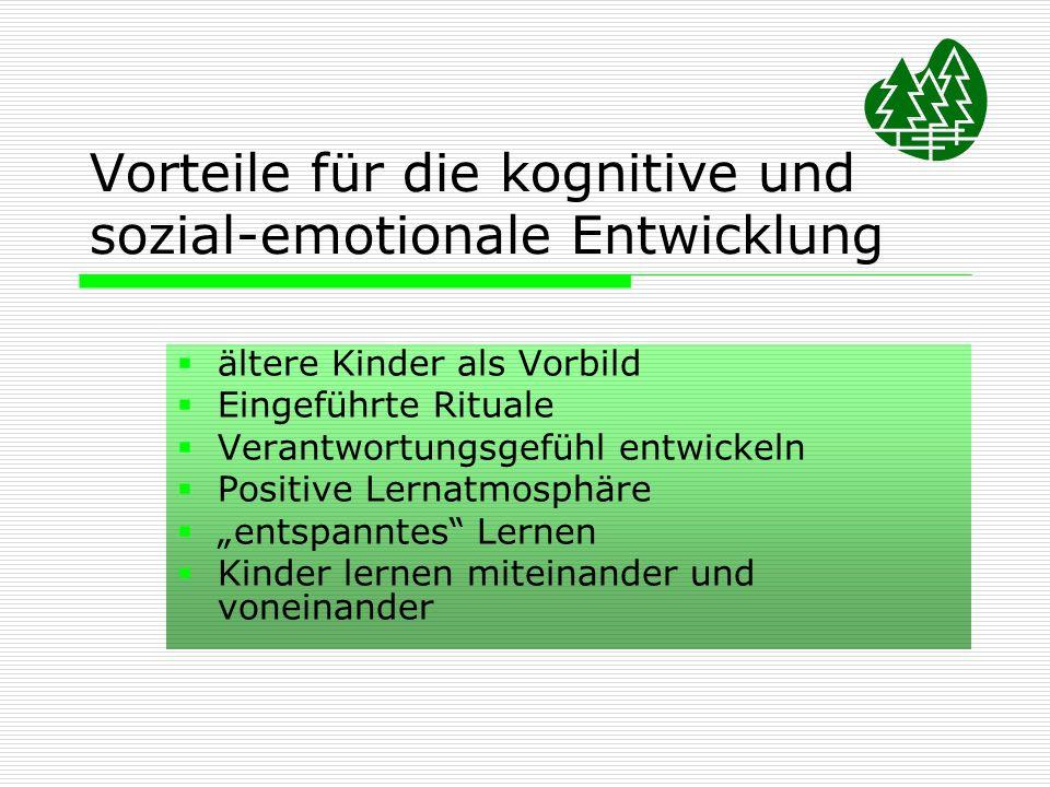 Vorteile für die kognitive und sozial-emotionale Entwicklung ältere Kinder als Vorbild Eingeführte Rituale Verantwortungsgefühl entwickeln Positive Le