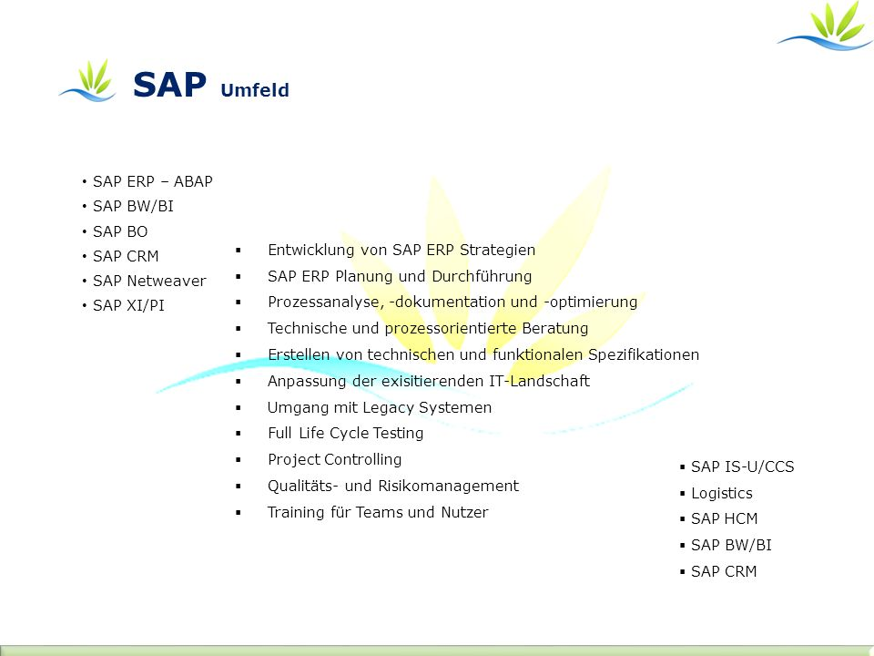SAP Umfeld Entwicklung von SAP ERP Strategien SAP ERP Planung und Durchführung Prozessanalyse, -dokumentation und -optimierung Technische und prozessorientierte Beratung Erstellen von technischen und funktionalen Spezifikationen Anpassung der exisitierenden IT-Landschaft Umgang mit Legacy Systemen Full Life Cycle Testing Project Controlling Qualitäts- und Risikomanagement Training für Teams und Nutzer SAP IS-U/CCS Logistics SAP HCM SAP BW/BI SAP CRM SAP ERP – ABAP SAP BW/BI SAP BO SAP CRM SAP Netweaver SAP XI/PI
